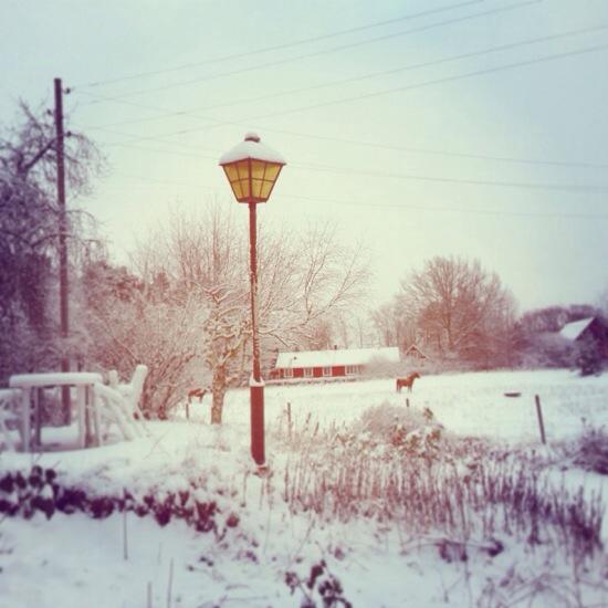 Oså kom snön. Bättre sent än aldrig<3
